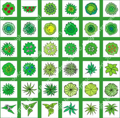 Beginner Learn Landscape Design Symbols